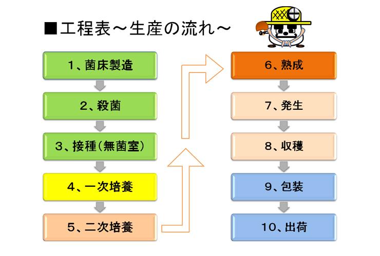 工程表 -生産の流れ-